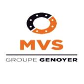 MGI Vilmar Services